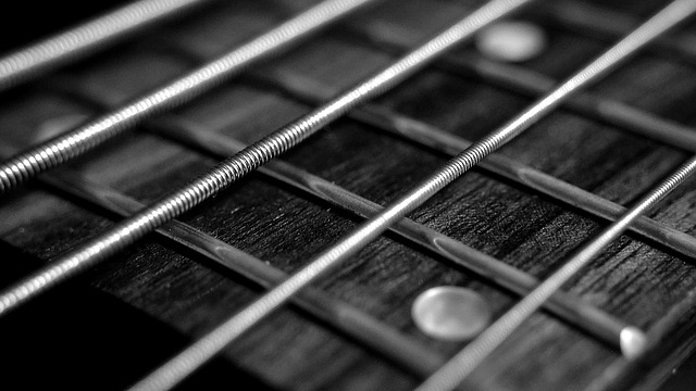 מיתרים לגיטרות